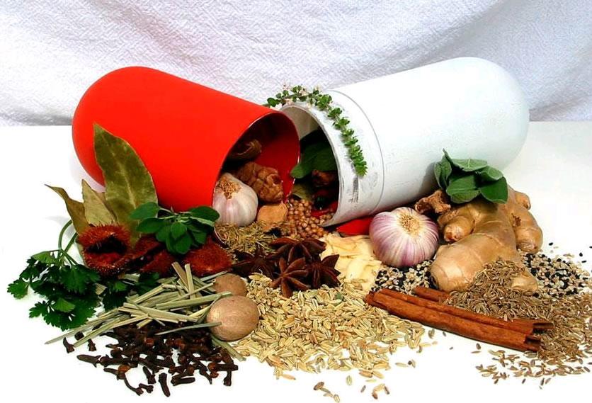 plantas medicinais cpa