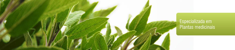 Especializada em plantas medicinais