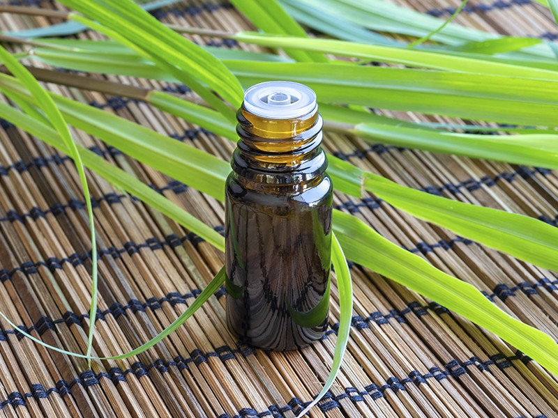 Lemon Grass (óleo essencial)