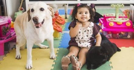 Animal de estima��o ajuda a combater e controlar problemas de sa�de
